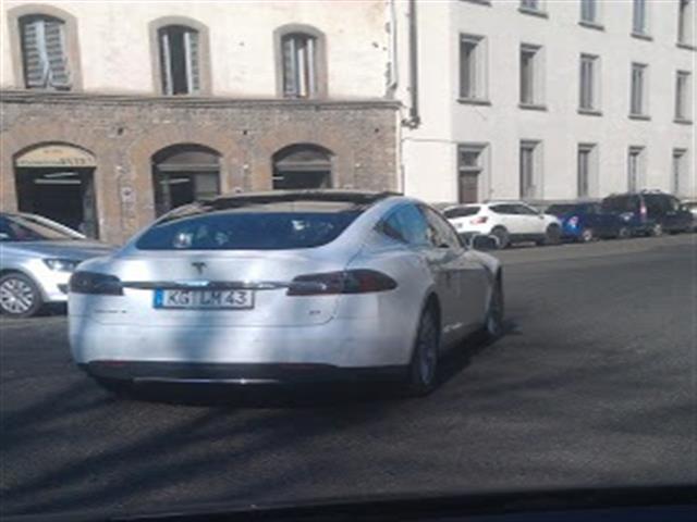 Raduno Internazionale Tesla Motors